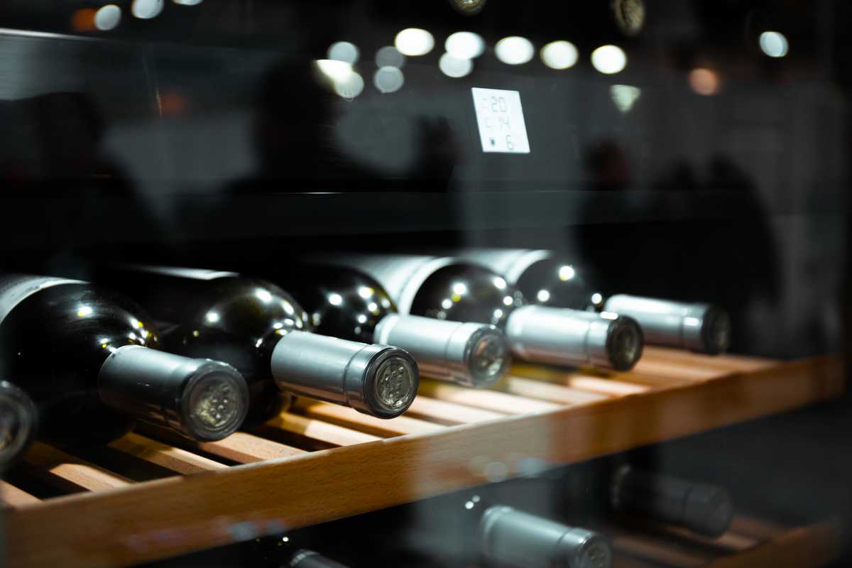 comment choisir sa cave à vin
