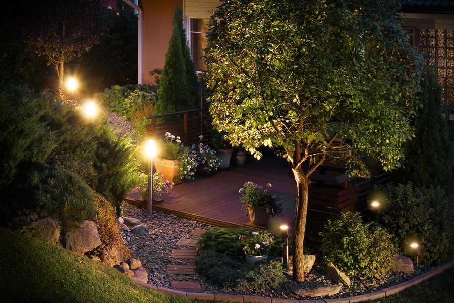 éclairer un arbre du jardin